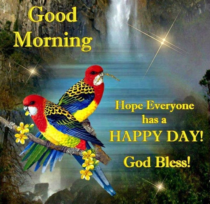 Happy Good Morning HD Picture
